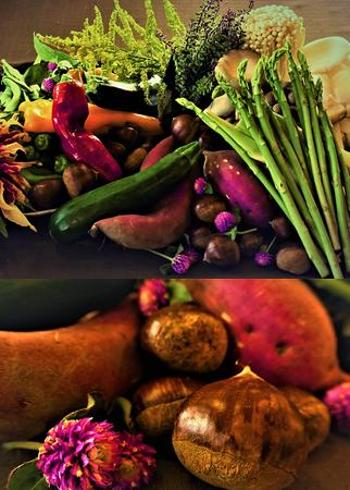 長野奧志賀の地物野菜