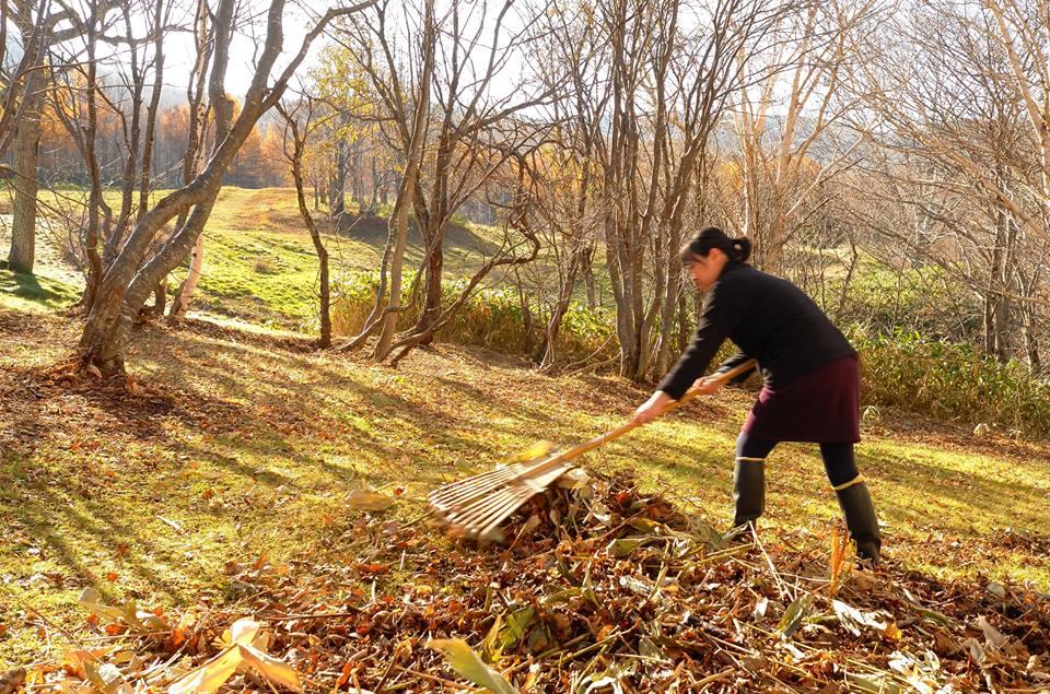 秋の作業は冬を迎え入れる大切な時間。