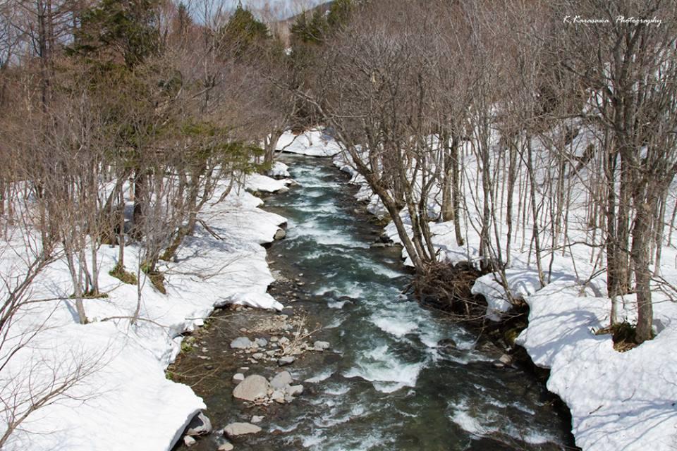 雑魚川も雪解けです。そして釣り解禁!