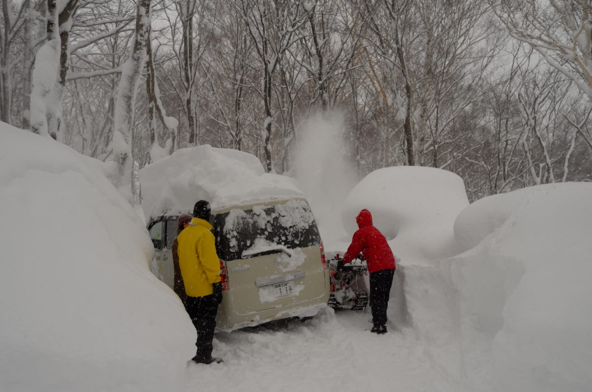 凄まじい豪雪だった1月のある日