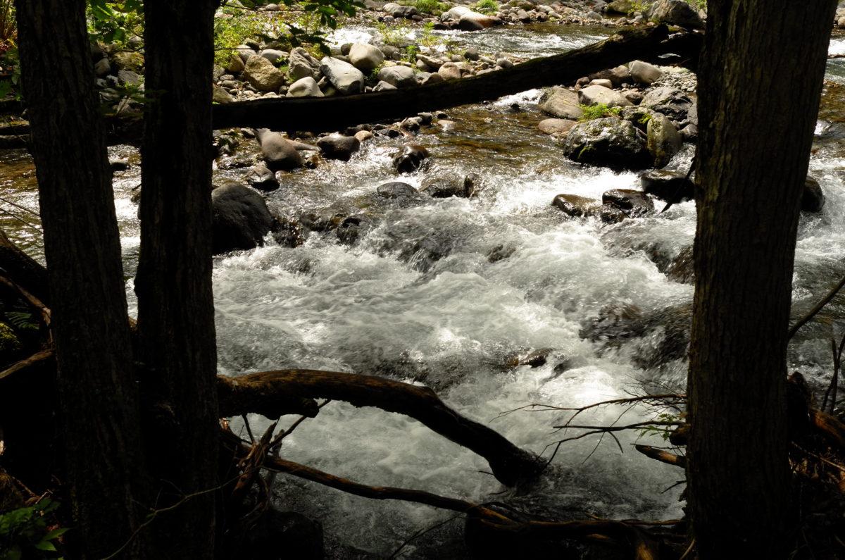 奥志賀渓谷の渓流音に癒されます。