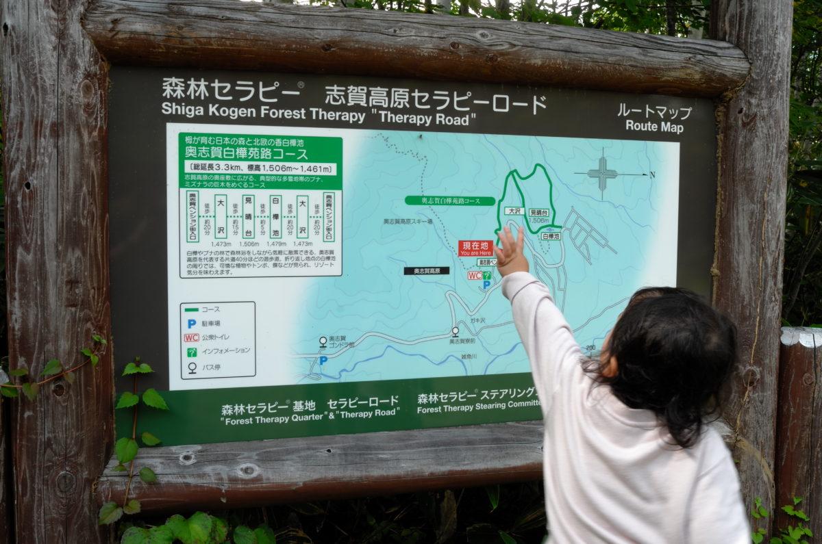 志賀高原セラピーロードに認定。