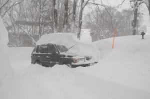 雪見だいふく&モヒカン車
