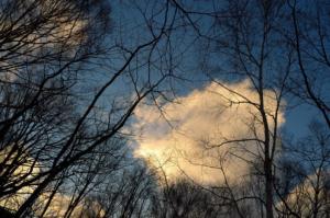 空に癒されます