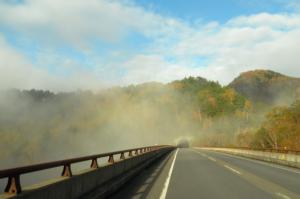 秋の色、イロイロ