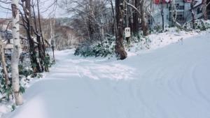 根雪を大切に