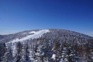 春スキー、奥志賀で楽しい汗を。