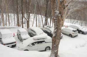 春の雪に包まれた、久々の光景。