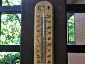 今夏一番、冷えっ冷えっです。