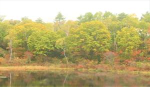 志賀高原、秋の一沼
