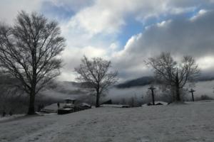 雪の気配を感じた朝。