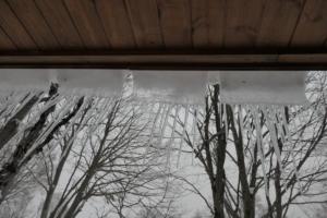 ちいさな氷柱たち。