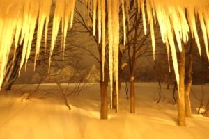 愛着ある氷柱たち。