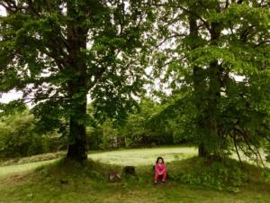 霧雨、娘と散歩。