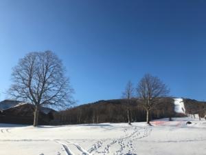 午前8時、青い空!