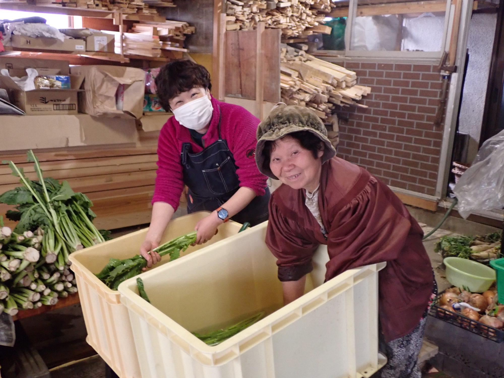 テゾーロの野沢菜=小布施のばあちゃん秘伝