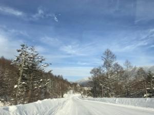たくさんの雪に感謝。