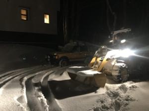 久々に降参、凄い雪。