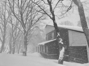 大雪注意報デシタヨ。