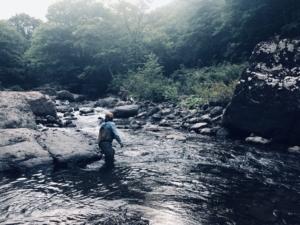 渓流、無心、大自然。