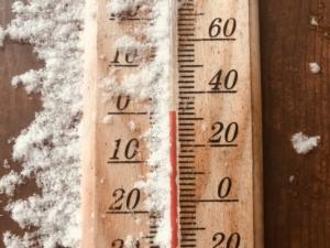 待ちましょう、楽しい冬を。
