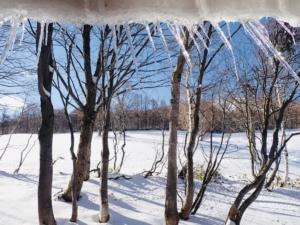 いよいよはじまる冬シーズン。