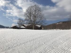 山の天気は色々な春スキー。